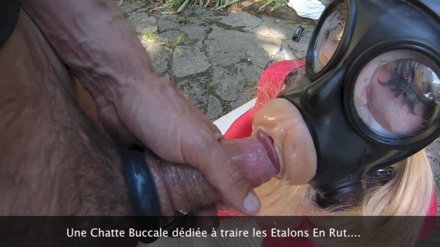 Transsex: (LatexaDoll) - Crossdresser LatexaDoll Gets Facefucked Wearing a Fleshlight Gas Mask [SD] (461.16 Mb)