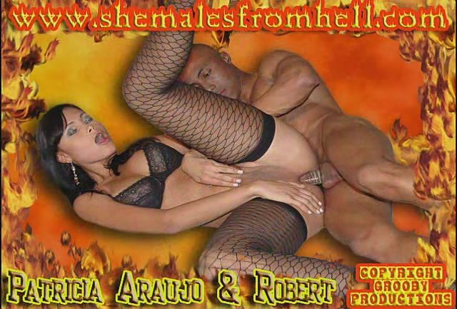 Transsex: (Patricia Araujo, Robert) - Shemales From Hell [DVDRip] (146 MB)