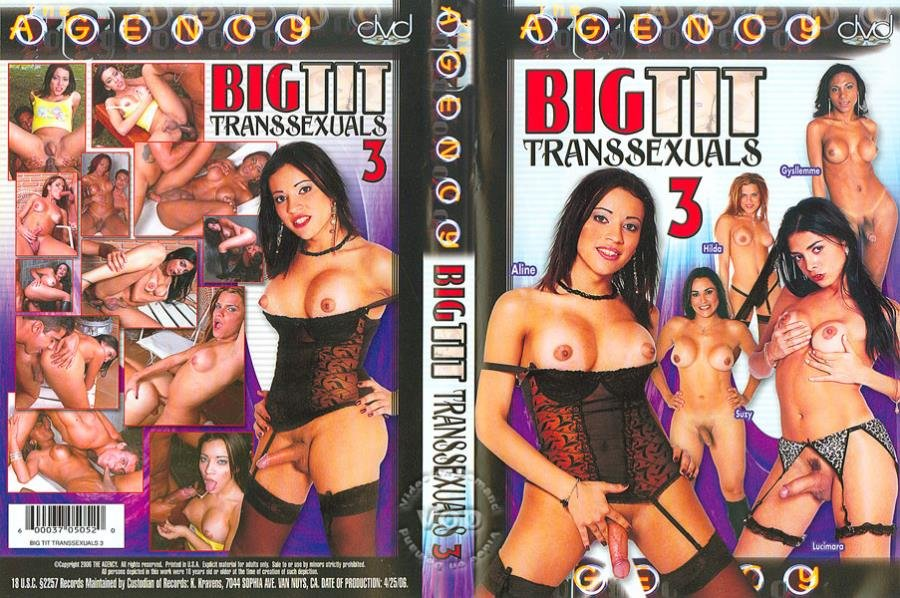 The Agency: (Lucio Flavio) - Big Tit Transsexuals 3 [SD] (999.37 Mb)