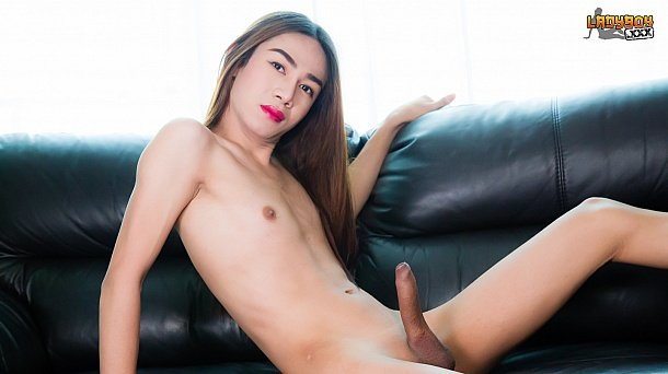 Ladyboy Solo Porn - ladyboy solo | Newest Shemale Porno - Download (vipfile)