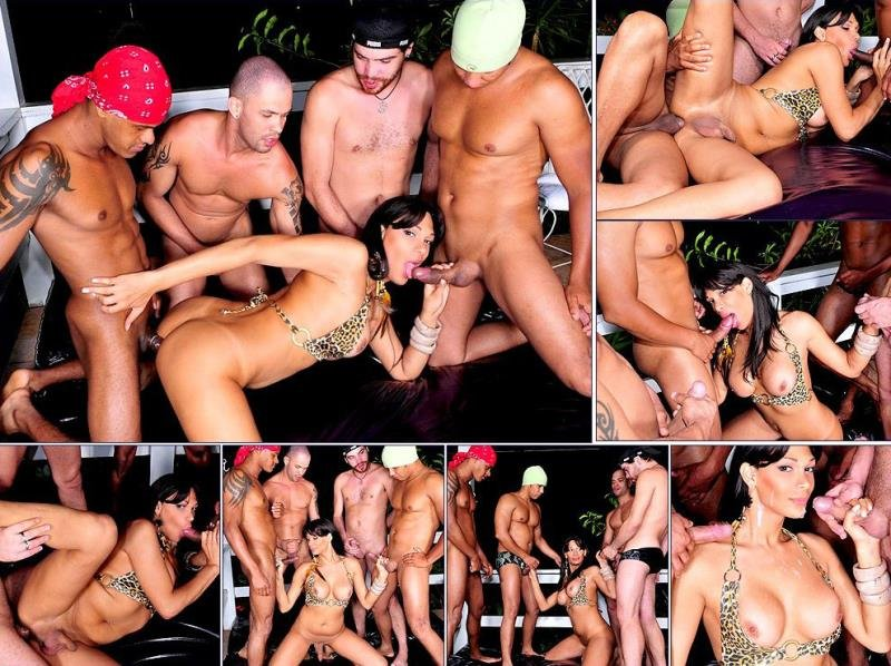 TrannyGangbangers.com: (Marcela, Renan, Ricco, Tony  William) - Siterip [HD] (517.24 Mb)